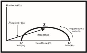 avaliacao corporal por bioimpedancia reatancia resistencia